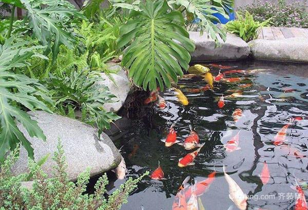 庭院鱼池设计深度