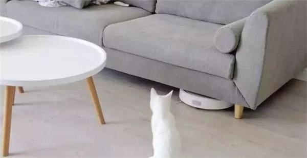 家具高度难清洁