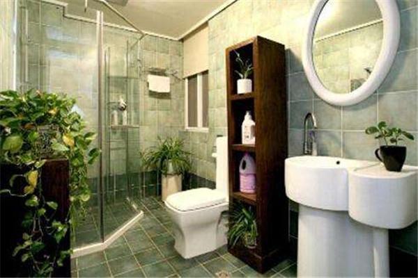 厕所在房屋中间破解方法之养绿植