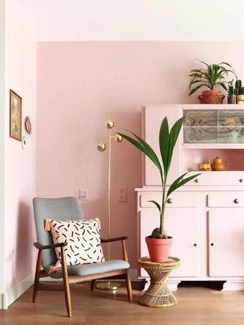 粉色墙壁不值得追捧