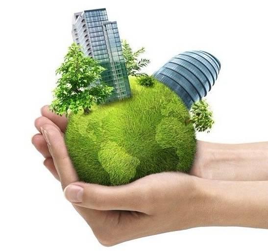 绿色植物就是环保必备品