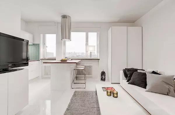 25平米单身公寓效果图——多人沙发