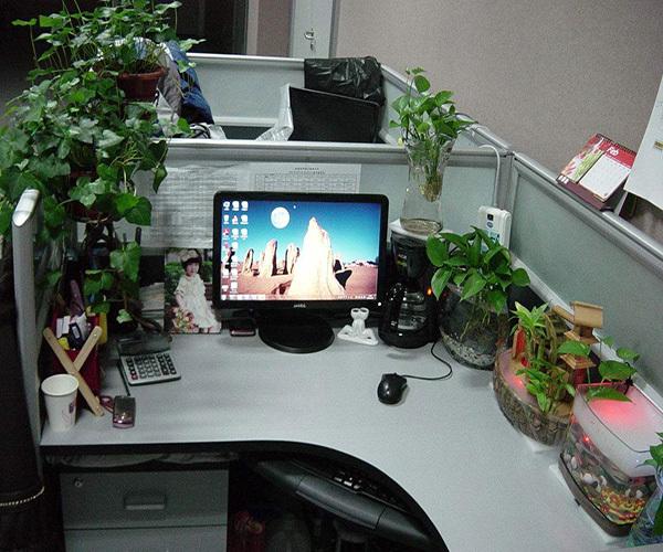 办公桌的七大风水禁忌