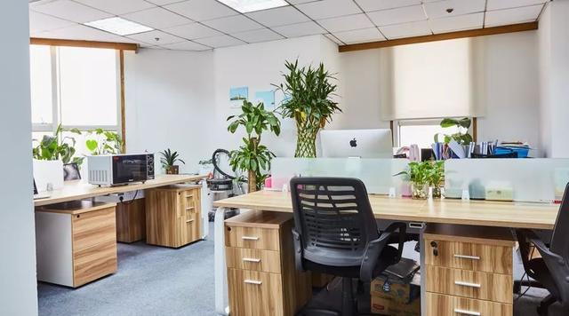 办公室的墙面装修