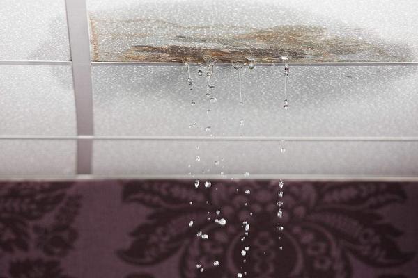 天花板漏水谁负责