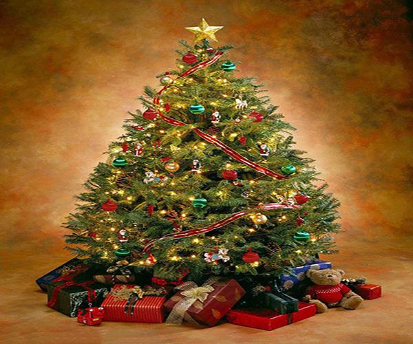 圣诞树如何装饰