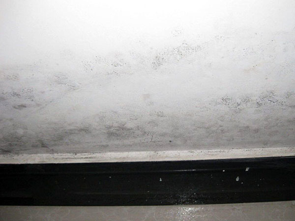 墙面返潮和渗水的区别