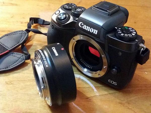 单反入门相机型号排名