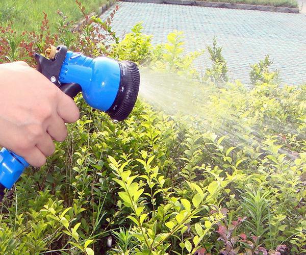 夏天浇花几天一次