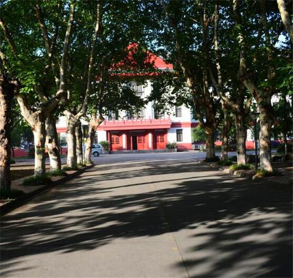 四川大学校园及周边景点