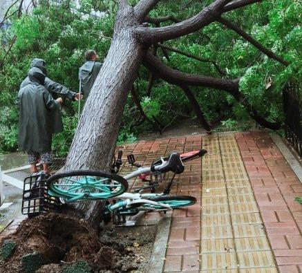 山东济南受台风影响吗