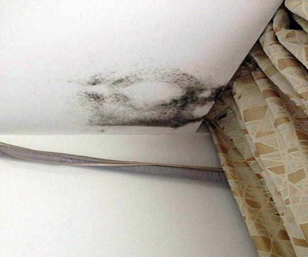 天花板漏水1.jpg