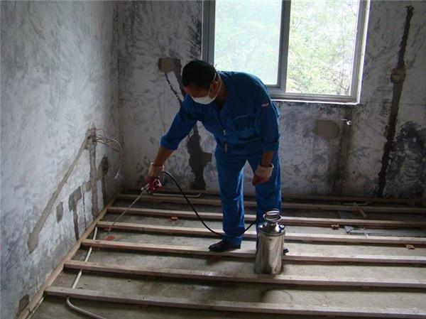 湛江新房装修是否需要做白蚁防治