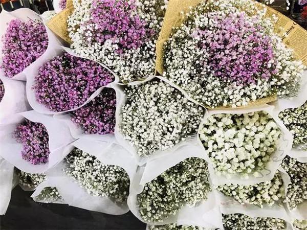 斗南花卉市场