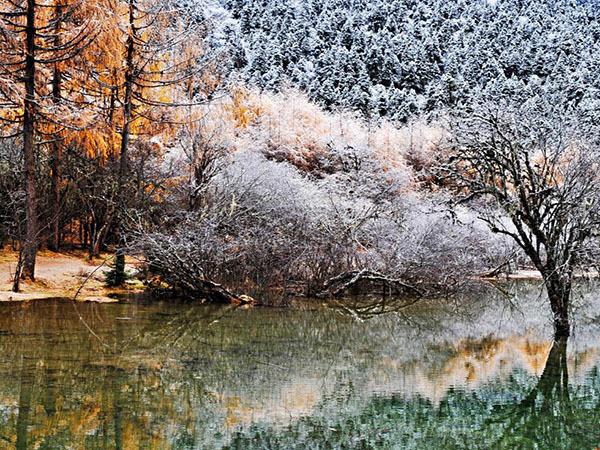 霜降是幾月幾日2019
