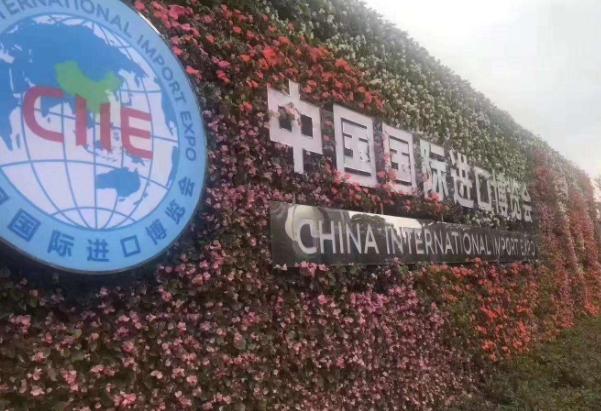 上海进博会门票怎么买