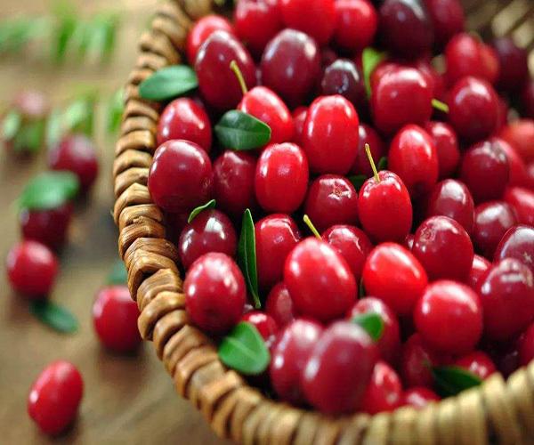 蔓越莓哪些人不能吃