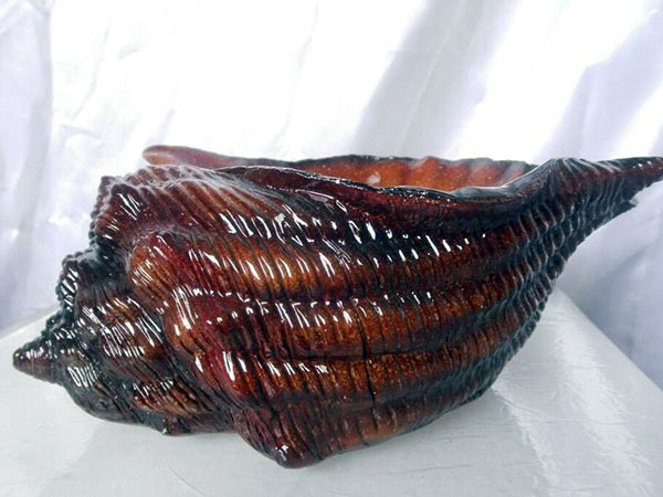 海螺擺件有什么寓意