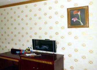 硅藻泥和液体壁纸哪一种好用  家居墙面涂料