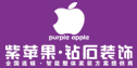 紫苹果钻石装饰