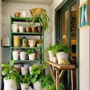 植物系列阳台设计