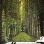 绿色大自然背景墙纸
