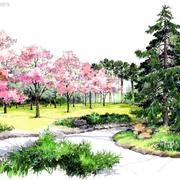 马克笔森林系创意画