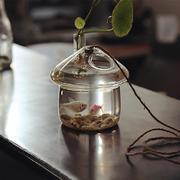 小屋子型鱼缸