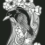 鹦鹉形象剪纸贴图欣赏