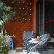 红棕色阳台植物盆栽