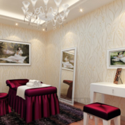 欧式简约系列小型美容院
