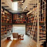 镂空型楼中楼书架设计