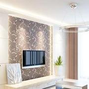 欧式简约型客厅电视背景墙装修设计