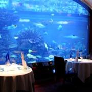 海洋气息酒店装修图片
