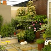 屋顶花园设计整体图