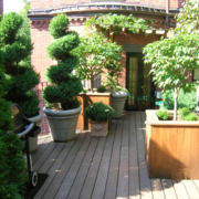 屋顶花园实景图