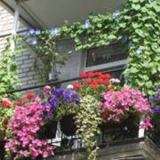 阳台设计实例