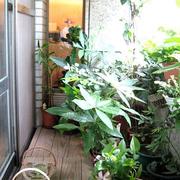 入户花园设计造型图