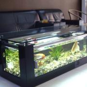 客厅设计鱼缸图