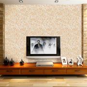 客厅电视背景墙衣