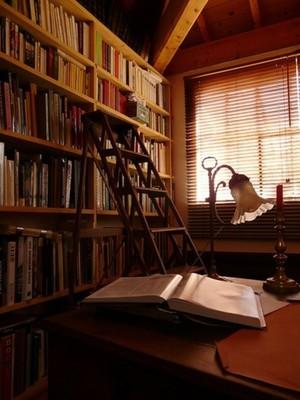 大学生图书馆书架图片展示