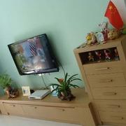 客厅原木浅色电视柜装饰