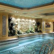别墅游泳池高档版