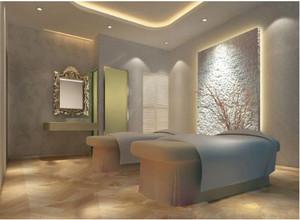欧式高贵典雅式美容院装修效果图