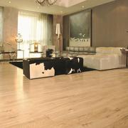 欧式简约型柔色木地板