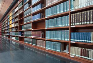 图书馆钢木混合简易朴素书架效果图