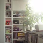 阳台书房书柜欣赏