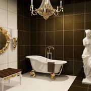 典雅高贵的洗手间