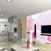 粉色迷人的电视背景墙