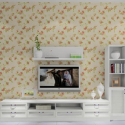 现代简约风格田园客厅电视背景墙装饰